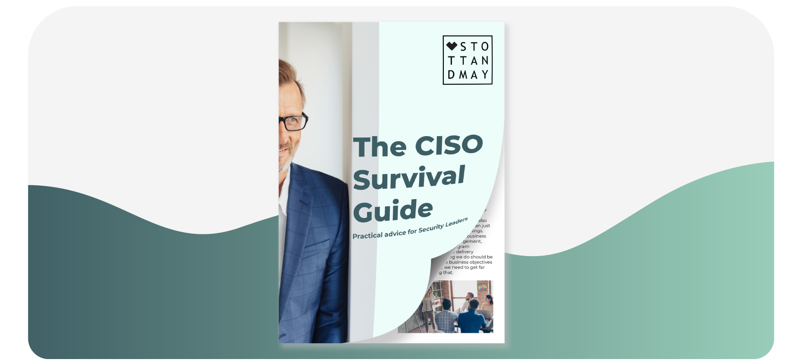 Stott and May CISO Survival Guide